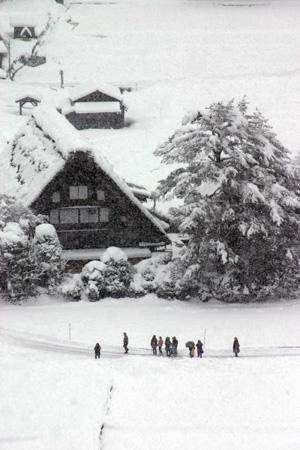 白銀の世界~白川郷合掌集落~雪