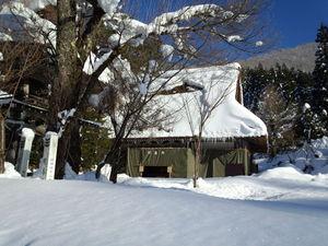 明善寺 本堂 冬