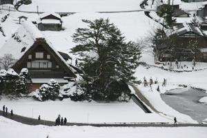 和田家 周辺スイレン池凍結