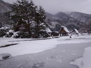 スイレン池は雪で埋まっても上がらないように!!
