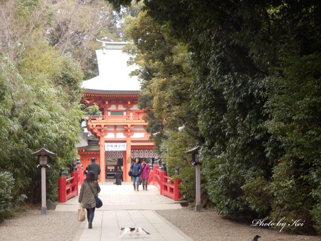 大宮氷川神社♪