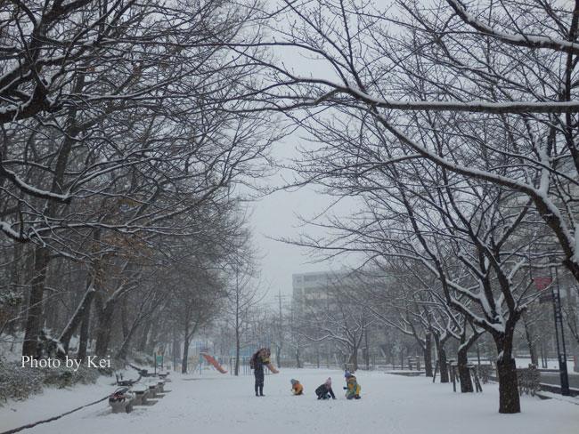 雪の公園♪