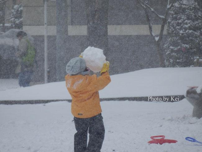雪の中の公園♪