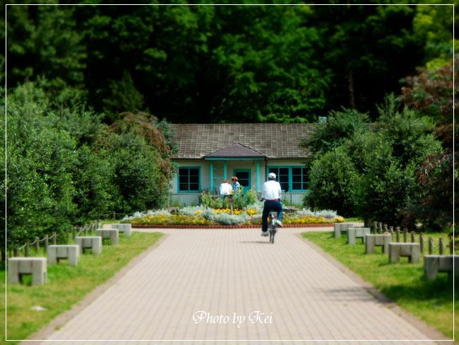 代々木公園内・東京オリンピック記念宿舎♪