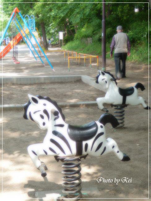公園&父♪