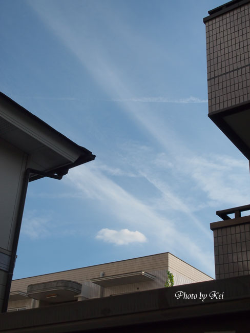 夕方の雲♪