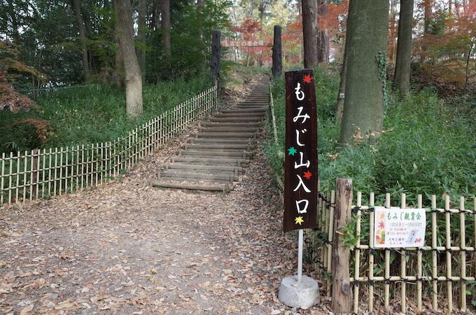もみじ山2013-2