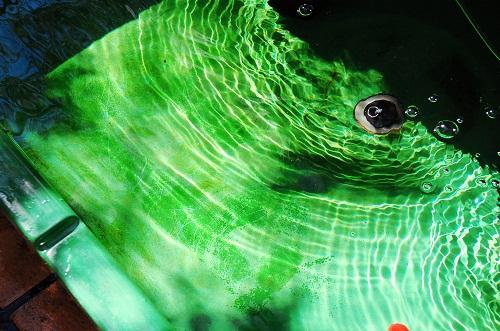 en verde 1