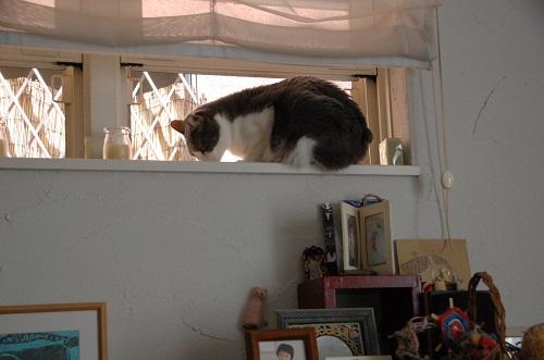 la ventana 1