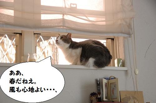 la ventana 3