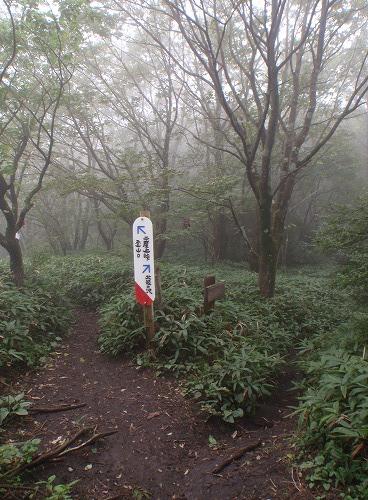 t2012asamakakusi-04