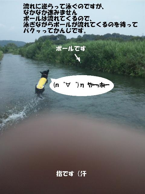 nakatu-3.jpg