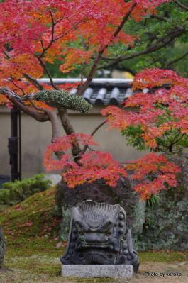 東寺の紅葉3