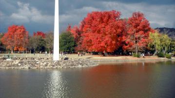 2012-12-1aki6.jpg