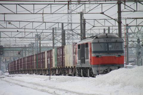 DF200-53.jpg
