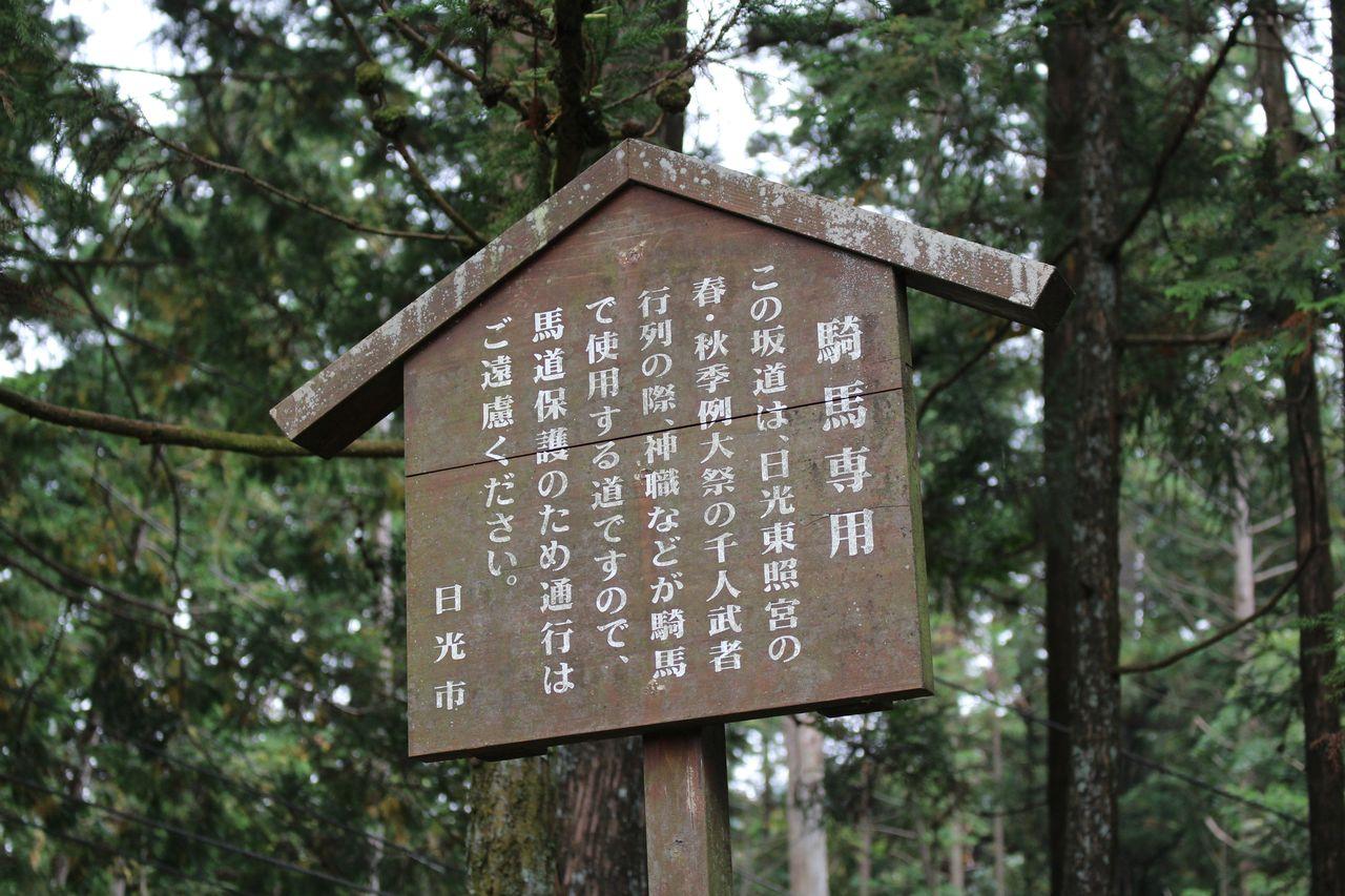 日光山輪王寺-4