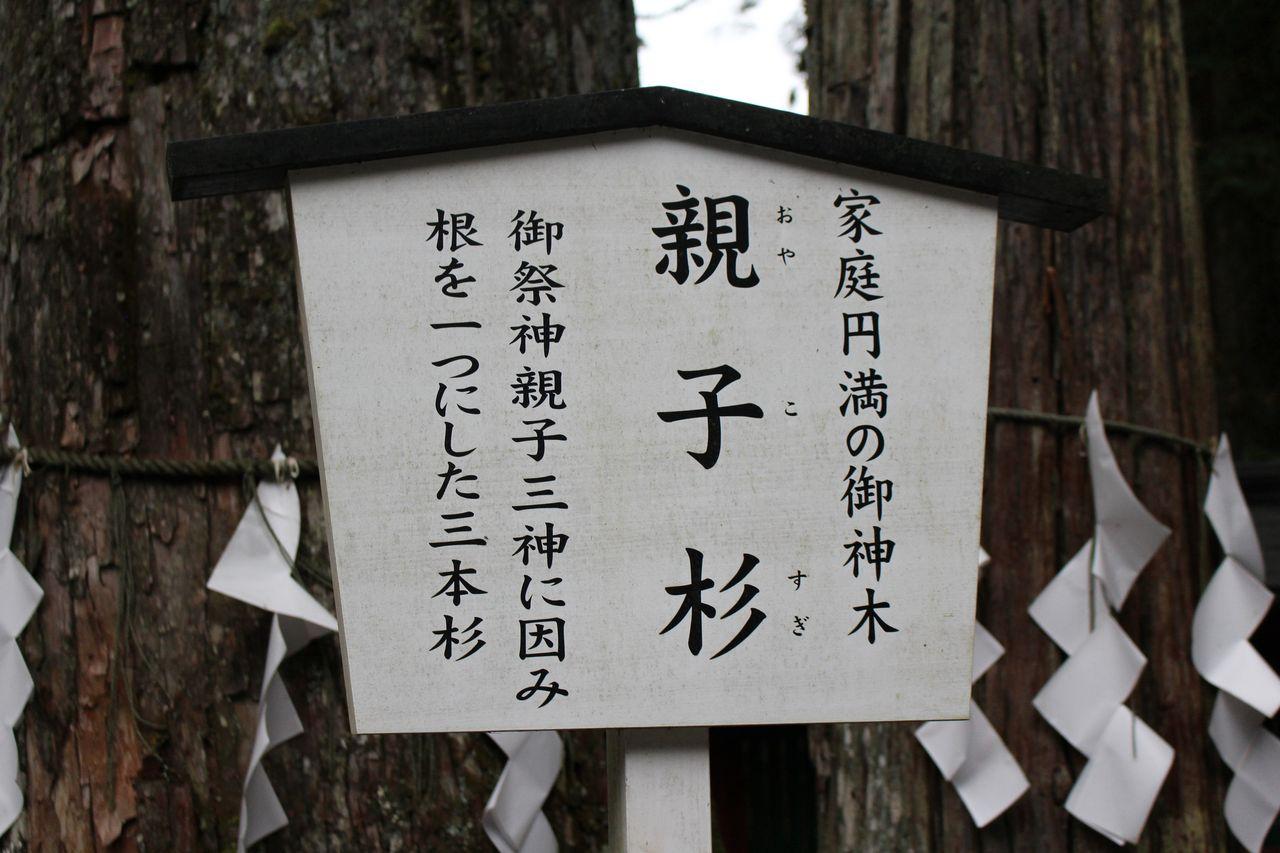 二荒山神社-17