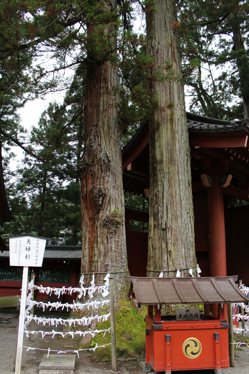 二荒山神社-13