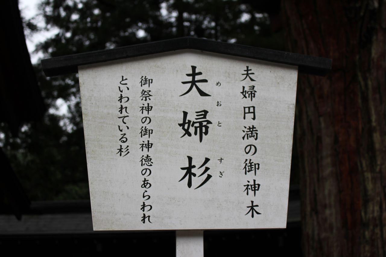 二荒山神社-14