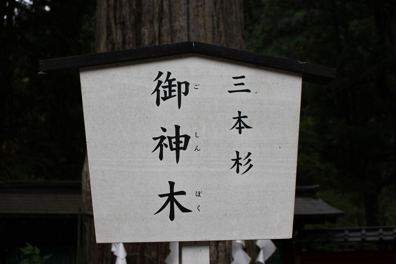二荒山神社-20