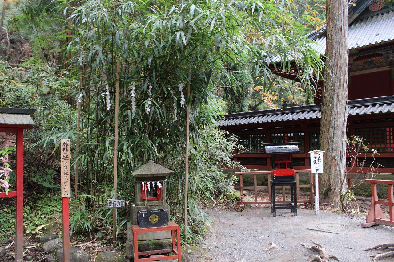 二荒山神社-35