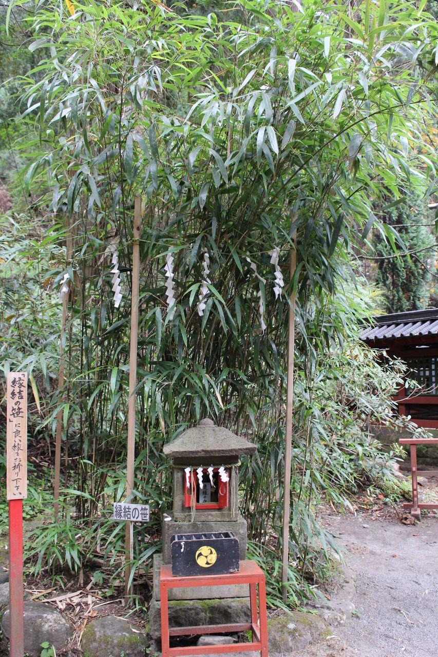 二荒山神社-36
