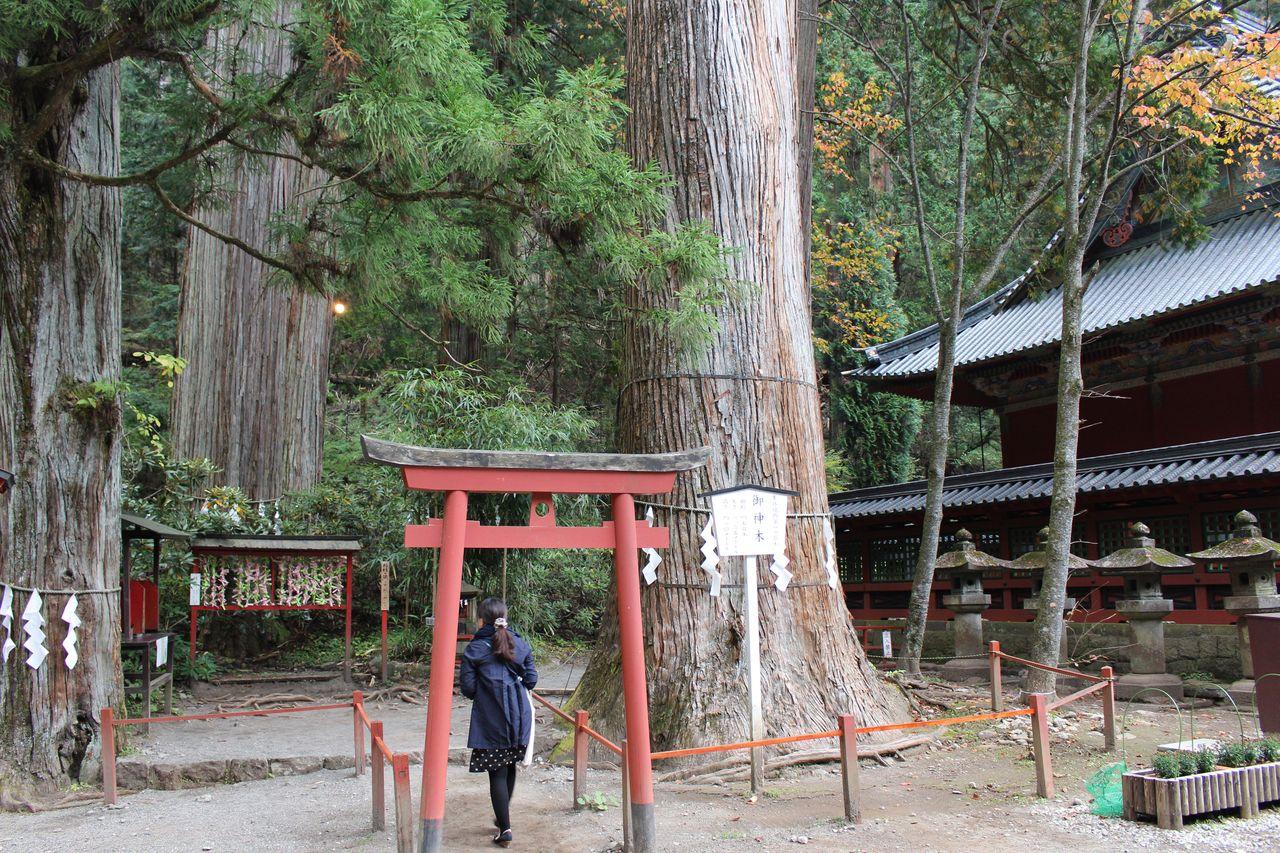 二荒山神社-32