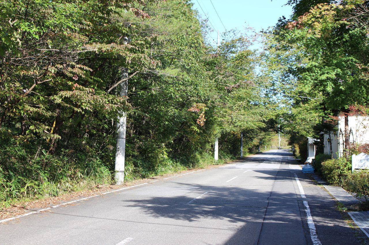 トロールの森 前の道