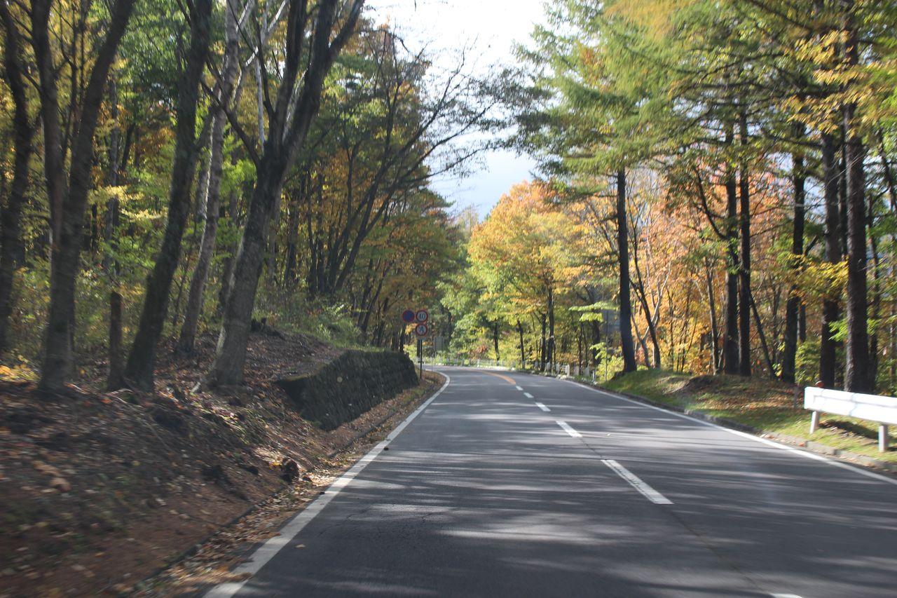 軽井沢周辺の道