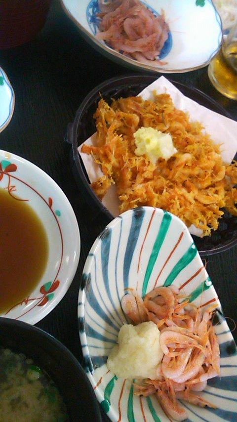 由比07桜海老料理
