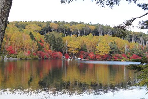 2012-10-11-4.jpg
