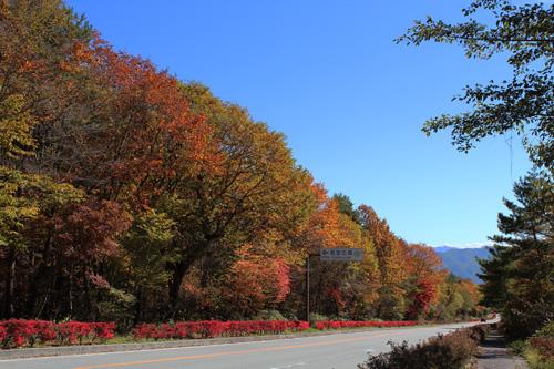 2012-10-26-4.jpg