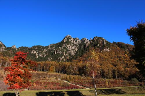 2012-10-29-1.jpg