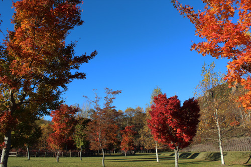 2012-10-29-3.jpg