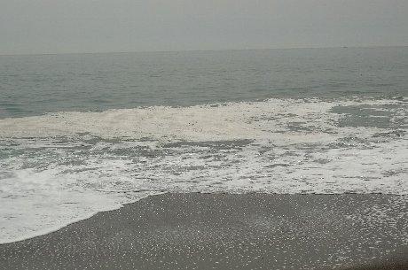 木古内2012.4.29④