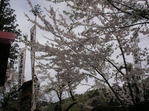 2012.冨士神社例祭【当日~】 (13)