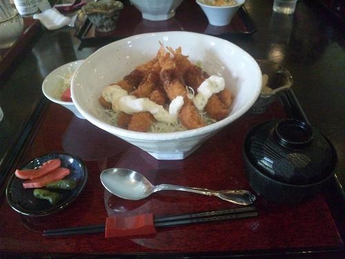 ライダー丼ツー (15)