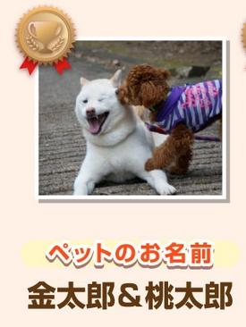 Baidu IME_2014-12-11_10-29-8
