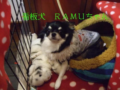 RAMU002.jpg