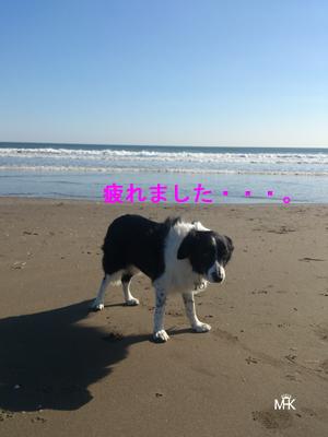 DSC_2327.jpg