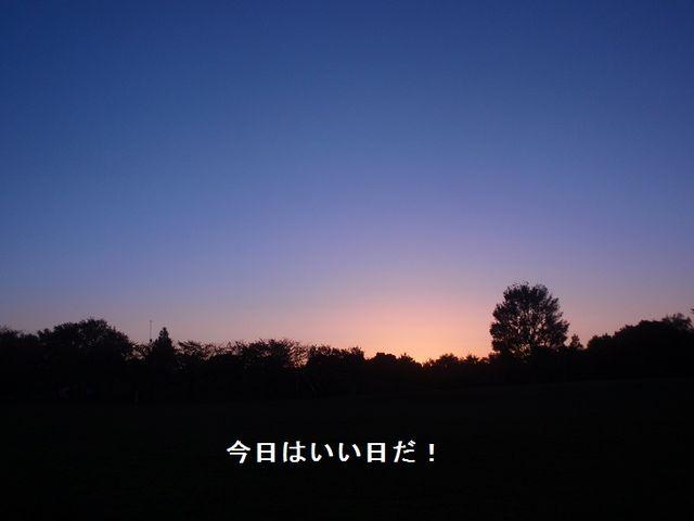 20121116.jpg