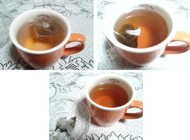 茶流痩々1回目経過