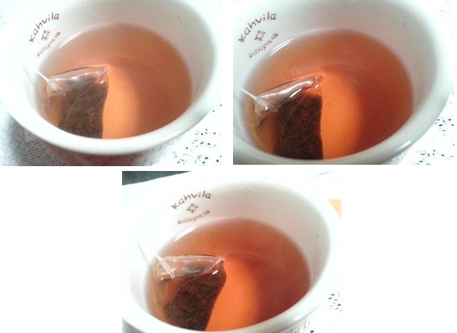 茶流痩々2回目経過