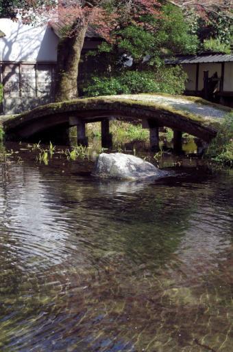 櫻井家庭園の橋