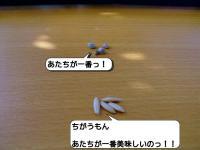20121107_211822.jpg