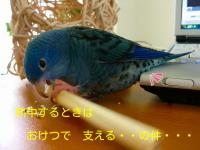 RzpFAB4F_qYg3T6_1350213485.png