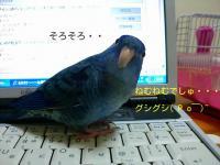 lzhPvzsQux_GzTD_1349536188_mj.jpg