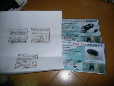 P1030350_convert_20120507184055.jpg