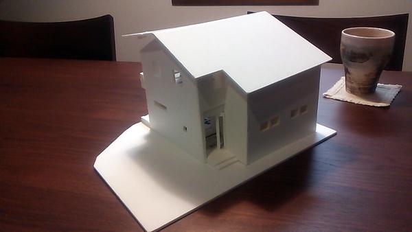 S邸白模型