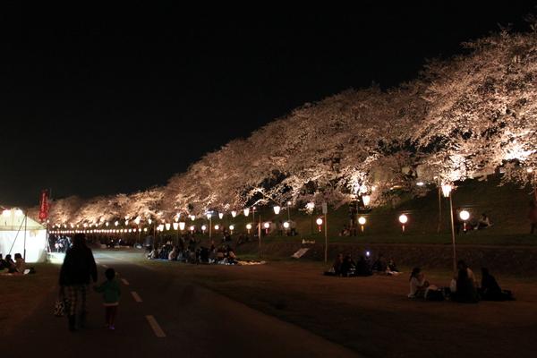 岡山さくらカーニバル2013②